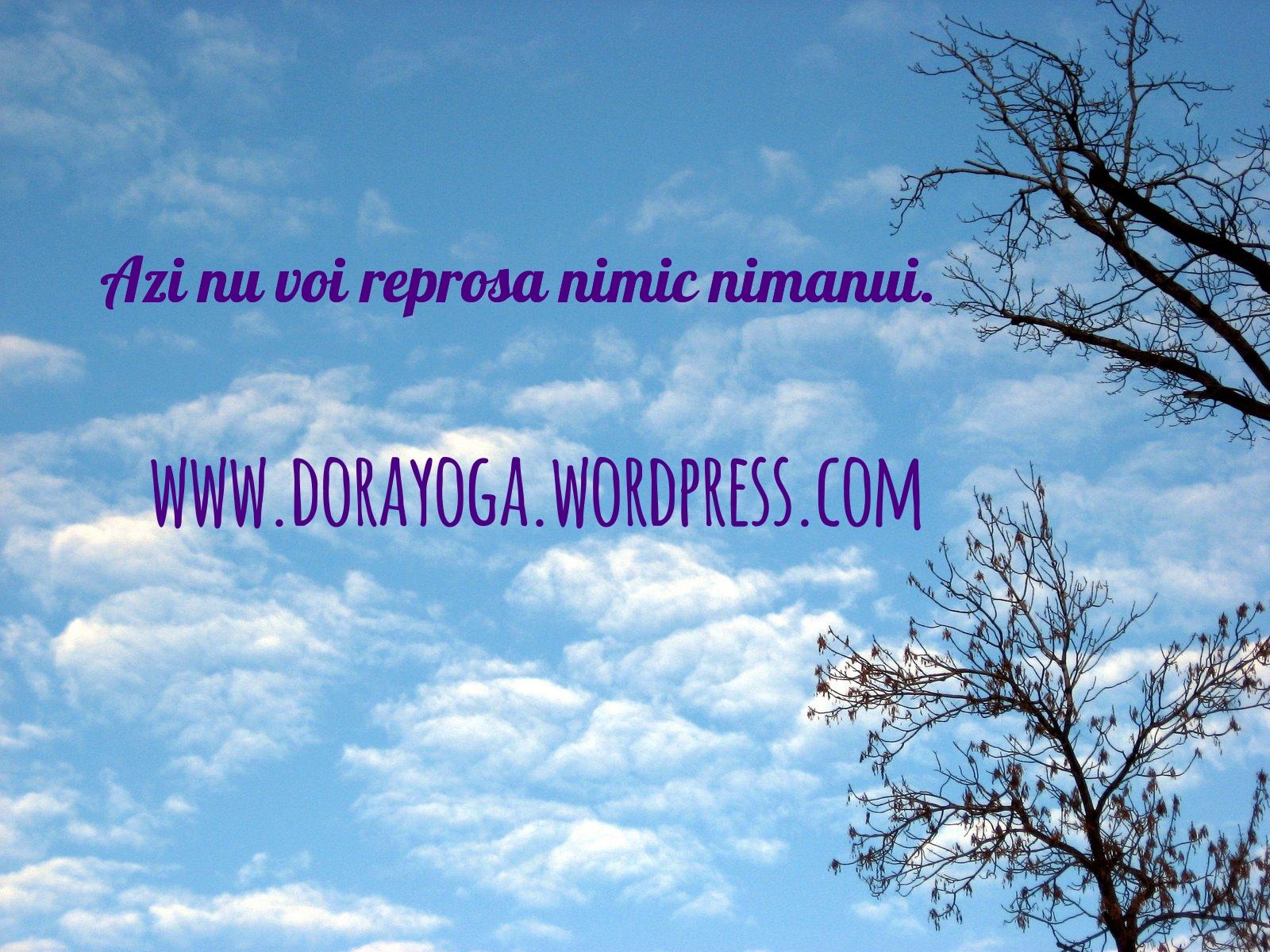 noreproach_dora